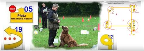 Rally Obedience - Agility Passion